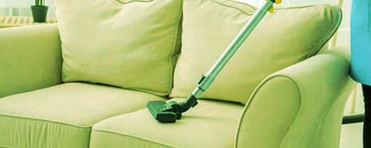 Expert Upholstery Cleaning Camberwell